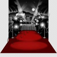"""Баннер пресс-волл на мероприятия (макет """"Красная дорожка"""", ПОД КЛЮЧ с печатью, доставкой, монтажом и вывозом)"""