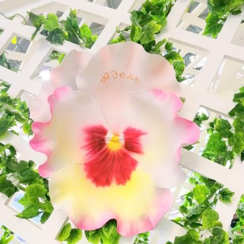 """Цветок  из фоамирана """"Виола Адель"""""""